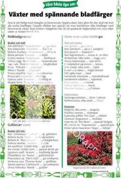 19. Växter med olika bladfärger