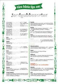 4. Jordgubbssorter