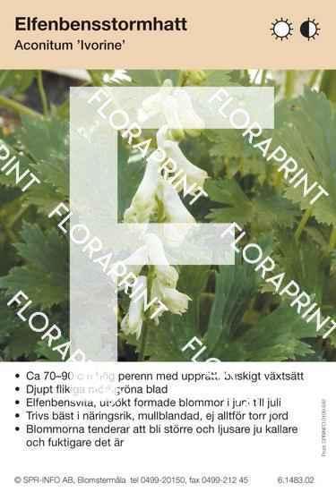 Aconitum Ivorine