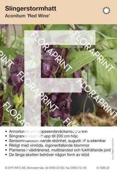 Aconitum Red Wine