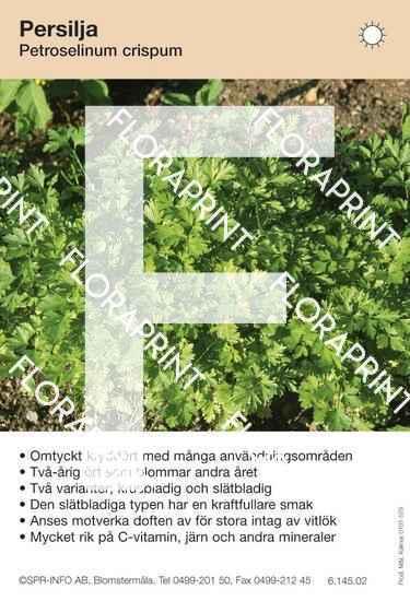 Petroselinum crispum allmän