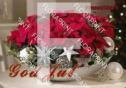 Presentkort - jul; röd
